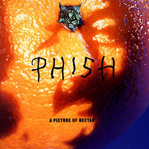 Phish – A Picture of Nectar