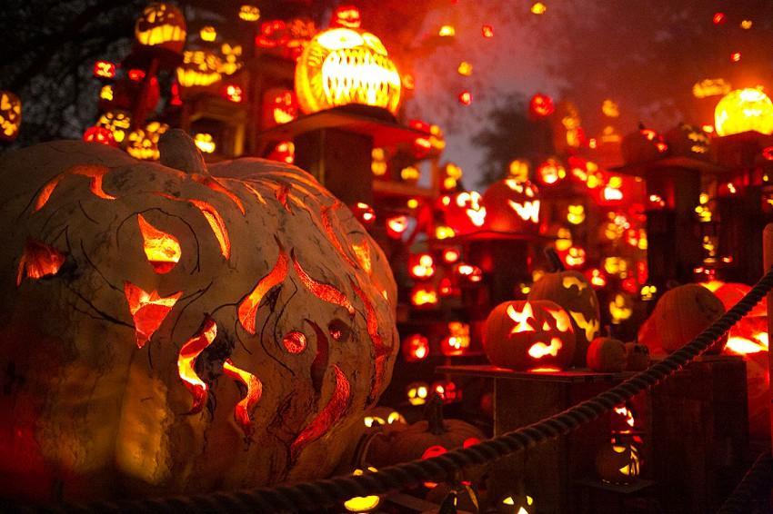 Jack-o'-Lanterns light the night
