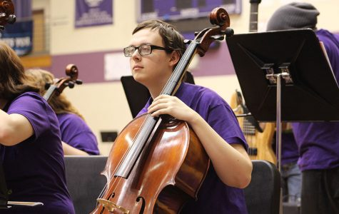 Gallery: StringFest entertains large crowd