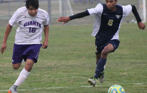 Boys soccer advance to county final four