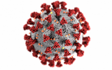 This virus isn't the first humans have had to deal with