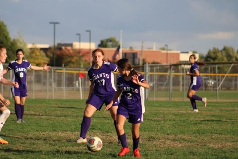 Soccer teams win county openers